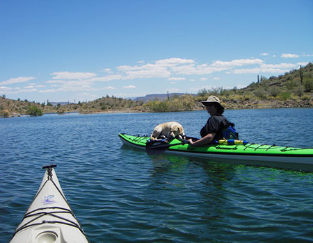 Doggie_and_Paddler