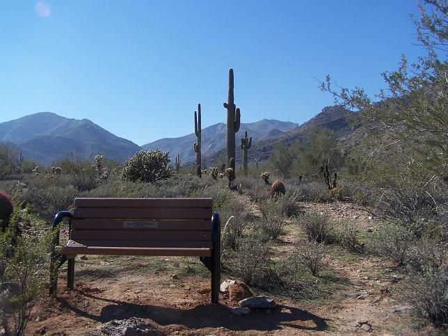 Memorial Photos Photo Galleries Maricopa County Parks Recreation