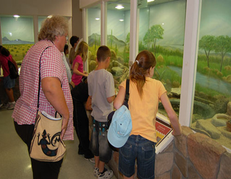 animal_exhibit_hall_lg